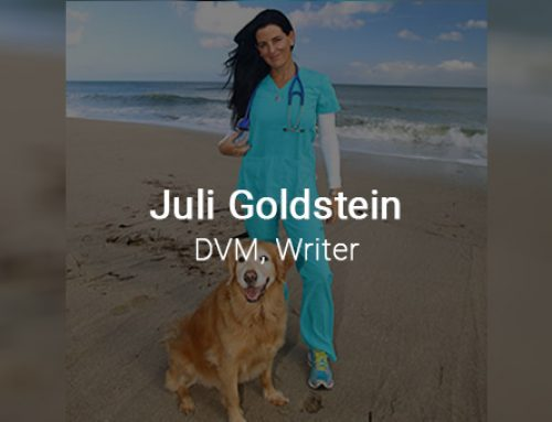 From the Desk of a Rumpus Writer: Get to Know Juli